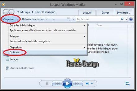 apparences lecteur windows media