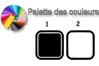 transformer photo couleur en noir et blanc